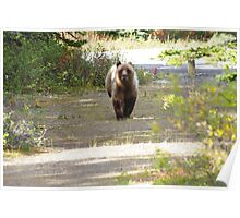 This Grizzly Charged Me Poster