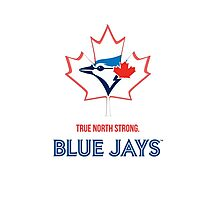 True North Strong Blue Jays Photographic Print
