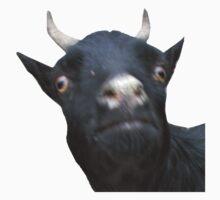 Derpy Goat.  Kids Clothes