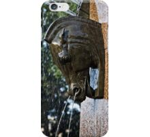 Fountain in a Sculpture (1) iPhone Case/Skin
