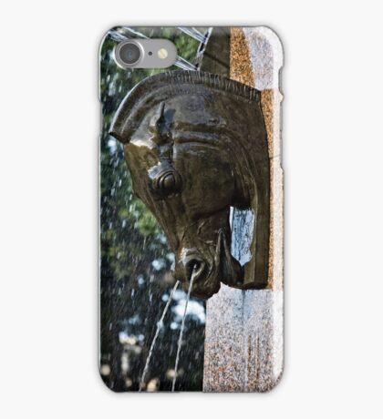 Fountain in a Sculpture (1) iPhone Case/Skin