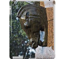 Fountain in a Sculpture (1) iPad Case/Skin