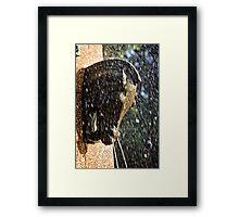 Fountain in a Sculpture (2) Framed Print