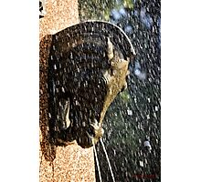 Fountain in a Sculpture (2) Photographic Print