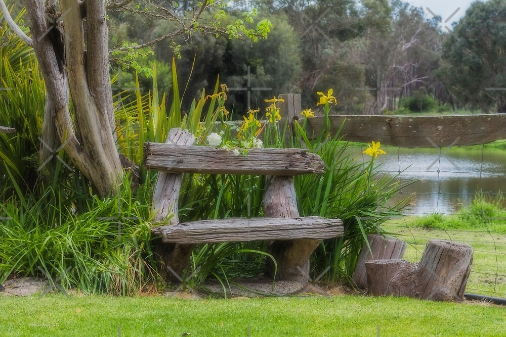 To Sit and Reflect Upon by Elaine Teague
