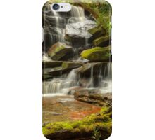 Somersby Moss 2014 iPhone Case/Skin