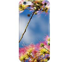 A Silken Spring - New Blossoms iPhone Case/Skin