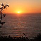 Sun on sea by Kathryn Steel