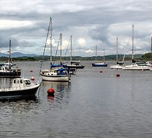 Crinan Harbour by Lynn Bolt