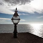 Lamp with a crooked hat.............Dorset UK by lynn carter