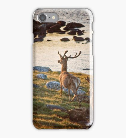 Following the Kings iPhone Case/Skin
