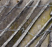 Wire Wood And Concrete by Jazzdenski