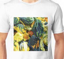 Beautiful Gourds Unisex T-Shirt