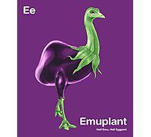 Ee - Emuplant // Half Emu, Half Eggplant Photographic Print