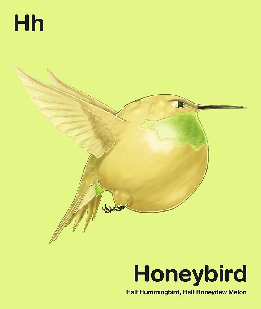 Hh - Honeybird // Half Hummingbird, Half Honeydew Melon by bkkbros