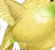 Hh - Honeybird // Half Hummingbird, Half Honeydew Melon Sticker