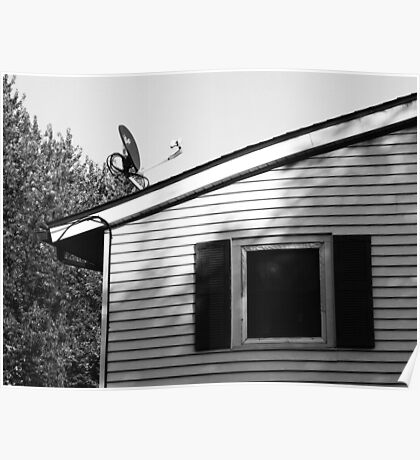 Top of a House Poster