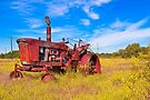 Old Tractor in its Golden Years - Autumn Landscape by Mark Tisdale