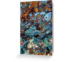 down at the bottom of the deep blue sea... Greeting Card