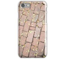 Maple Seeds on Cobble Stones  iPhone Case/Skin