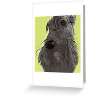 Scottish Terrier sketch Greeting Card