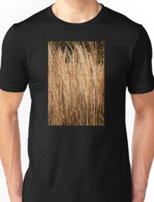 Golden Wheat Unisex T-Shirt