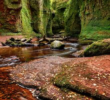 The Devil Pulpit at Finnich Glen by Jeremy Lavender Photography