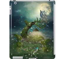 Keeper of the Enchanted - Spring Thaw iPad Case/Skin