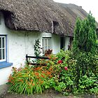 Adare - Ireland by Arie Koene