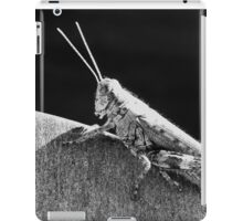 Hopper iPad Case/Skin