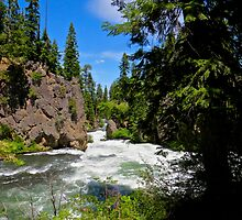 Deschutes River Rapids by gcampbell