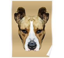 Pitbull low poly. Poster