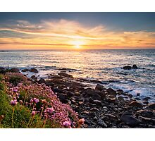 Flowers at Sunset Photographic Print