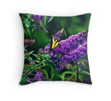 Sweeping By Throw Pillow