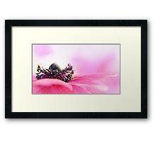 Precious Pink... Framed Print