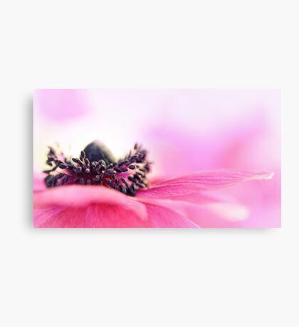 Precious Pink... Canvas Print