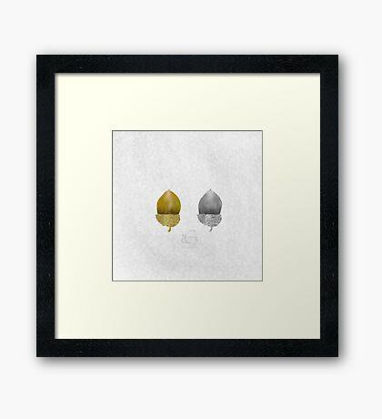 Acorn Framed Print