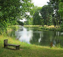 Lovely Langley Lake by InterestingImag