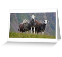 The Three Amigos Greeting Card