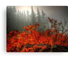 It's All In What You See  Canvas Print