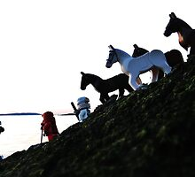 Here horsey by bricksailboat