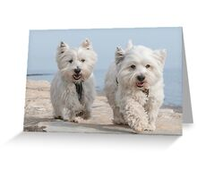 Best pals having a stroll Greeting Card