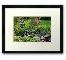 Pond Scene  Framed Print