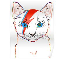 Catbowie Poster