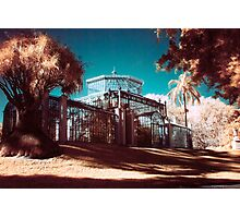 Infra Red Garden Conservatory Photographic Print