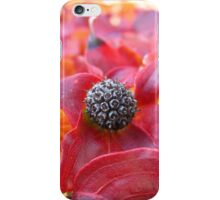 Dry iPhone Case/Skin