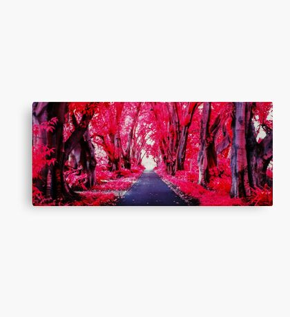 Infra Red Pink Trees Canvas Print