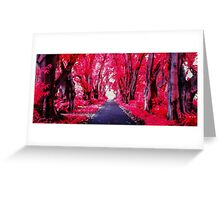 Infra Red Pink Trees Greeting Card