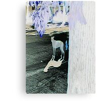 GHOST K-9 Canvas Print