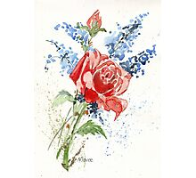 A Singing Rose Photographic Print